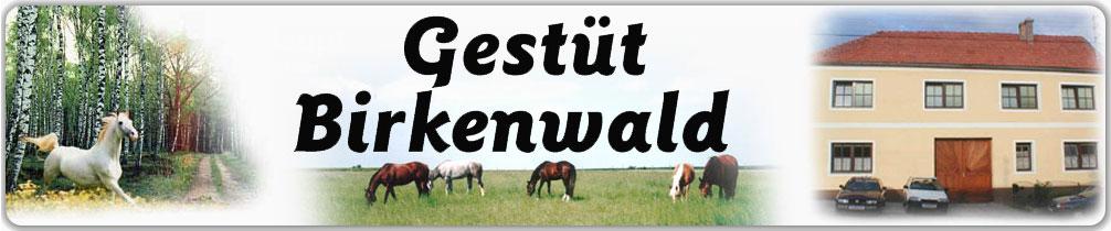 Gestüt Birkenwald Logo